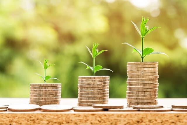 El dinero:Tacos de monedas con tallo verdes creciendo